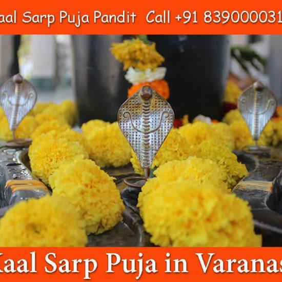 Kaalsarp Dosh Puja Varanasi