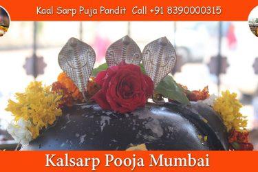 Kalsarp Pooja Mumbai