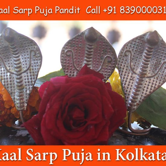 Kalsarp Pooja in Kolkata